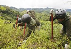 Mensaje a la Nación: Corah iniciará en el Vraem erradicación de cultivo ilegal de hojas de coca