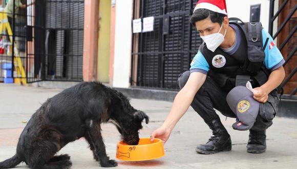 La comuna de Magdalena instó a contribuir con estas acciones de solidaridad para los canes que no tienen un hogar y viven en las calles. (Foto: Municipalidad de Magdalena)