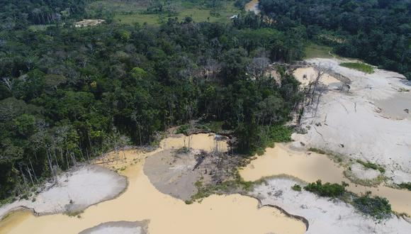 Bosques de castaña ubicados en la margen izquierda del río Pariamanu. Foto: FEMA Madre de Dios.