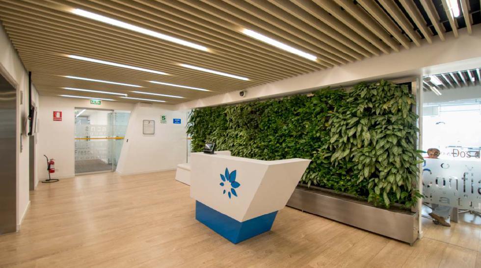 Ambientes verdes mejoran la productividad en el trabajo - 4