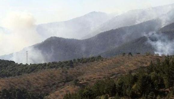 Un total de cinco hectáreas de cobertura natural resultaron afectadas, según la Oficina de Defensa Civil.