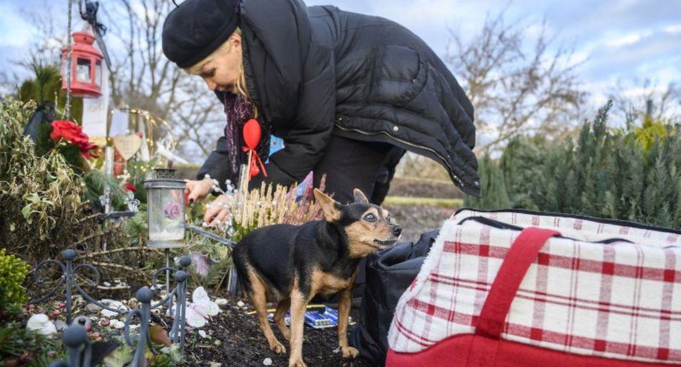 """<br>La dueña de la mascota Karla Lemke decora la tumba de su Pinscher miniatura masculino """"Alien"""" mientras su Pinscher """"Scarlet"""" de 15 años observa el crematorio Tierhimmel. (AFP)"""