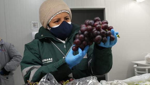 Se abren nuevos mercados para las agroexportaciones peruanas. (Foto: Midagri)