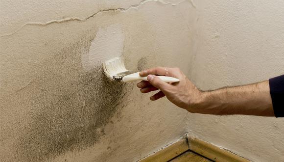 Utiliza una pintura contra la humedad. Hay pinturas de diferentes marcas. (Foto: Shutterstock)