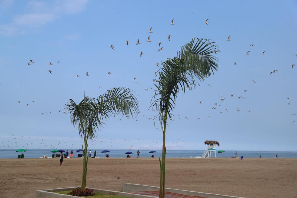 La playa Agua Dulce será una de las más visitadas el primero de enero.