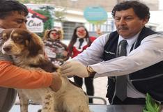 WUF: Lo que todo dueño de mascotas debe de saber sobre cómo, cuándo y dónde vacunarlas