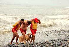 Verano: 600 agentes de Salvataje cubrirán más de 100 playas de Lima y Callao   FOTOS