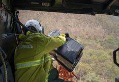 Australia lanza desde helicópteros comida a los animales afectados por incendios | VIDEO