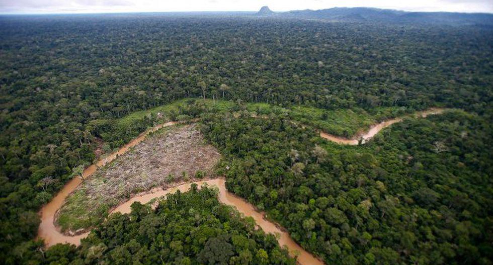 ¿La Amazonía fue alguna vez un océano?
