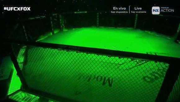 McGregor vs. Khabib: luchador irlandés salió envuelto en su bandera y fue ovacionado en UFC 229 | VIDEO. (Foto: Captura de pantalla)