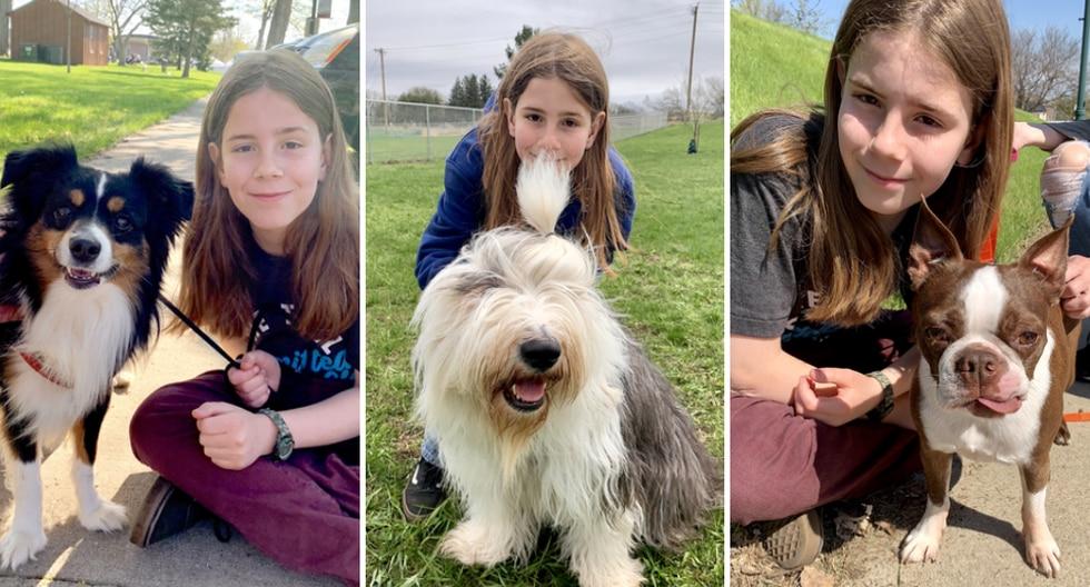 Gideon Kidd es el nombre del niño que causa sensación en Internet por compartir su amor por los perros. (Fotos: ivepetthatdog.com)