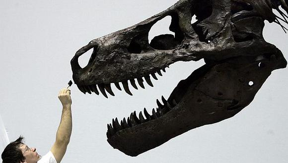 El tiranosaurio rex habitó la Tierra hace 66 millones de años. (Foto: AFP)