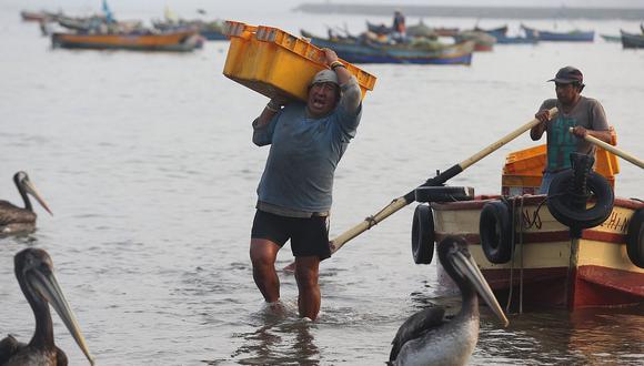 ¿Qué propone el seguro obligatorio para pescadores artesanales?