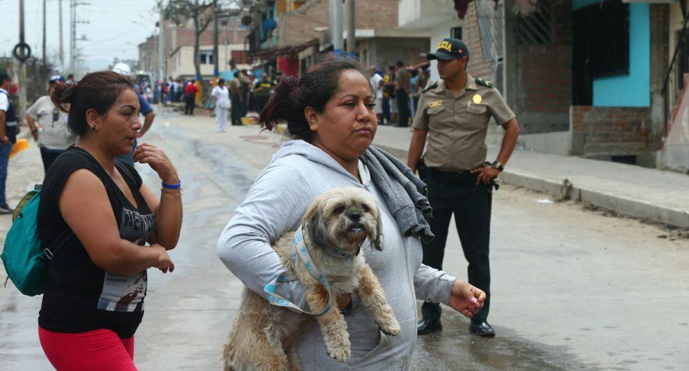 Un grupo de veterinarios llegó al lugar para atender a varios perros que presentan quemaduras de segundo grado. (Foto: Gonzalo Córdova)