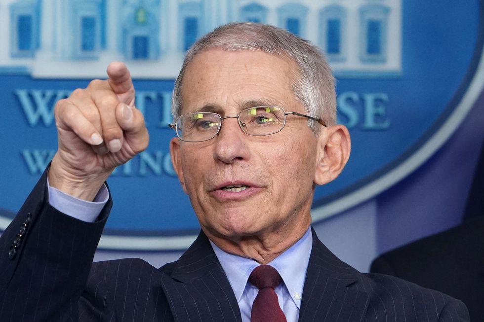 Anthony Fauci es un respetado científico estadounidense experto en enfermedades transmisibles. (MANDEL NGAN / AFP)