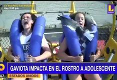 EE.UU.: Gaviota sorprende a adolescente en juego mecánico