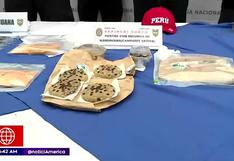 Detienen a mujer dedicada a la venta de galletas hechas con marihuana