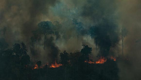 Vista aérea de una gran área quemada en la ciudad de Candeiras do Jamari en el estado de Rondonia. Fotografía: Victor Moriyama / Greenpeace.