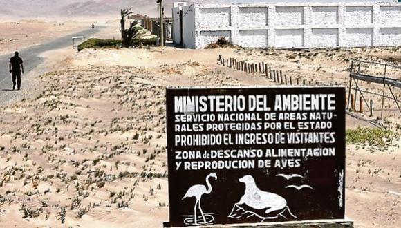 Suspenden licencias de construcción en la reserva de Paracas