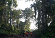 Madre de Dios: crean la primera Unidad de Gestión Forestal y de Fauna Silvestre