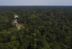 El Parque Nacional da Serra do Divisor amenazado por una nueva carretera hacia el Perú
