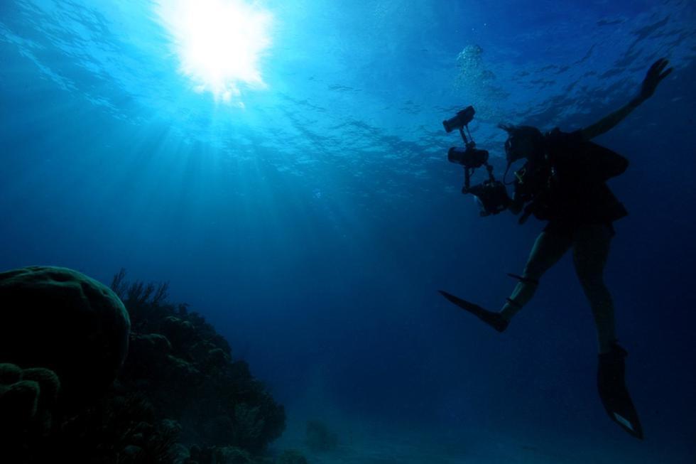 El buzo se metió al mar de Australia y se topó con una extraña criatura. (Foto referencial: Pixabay)
