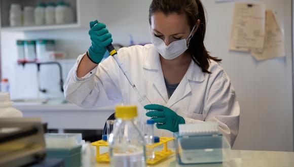 Hay más de 150 fármacos en proceso de investigación. (Foto: Thomas SAMSON / AFP)