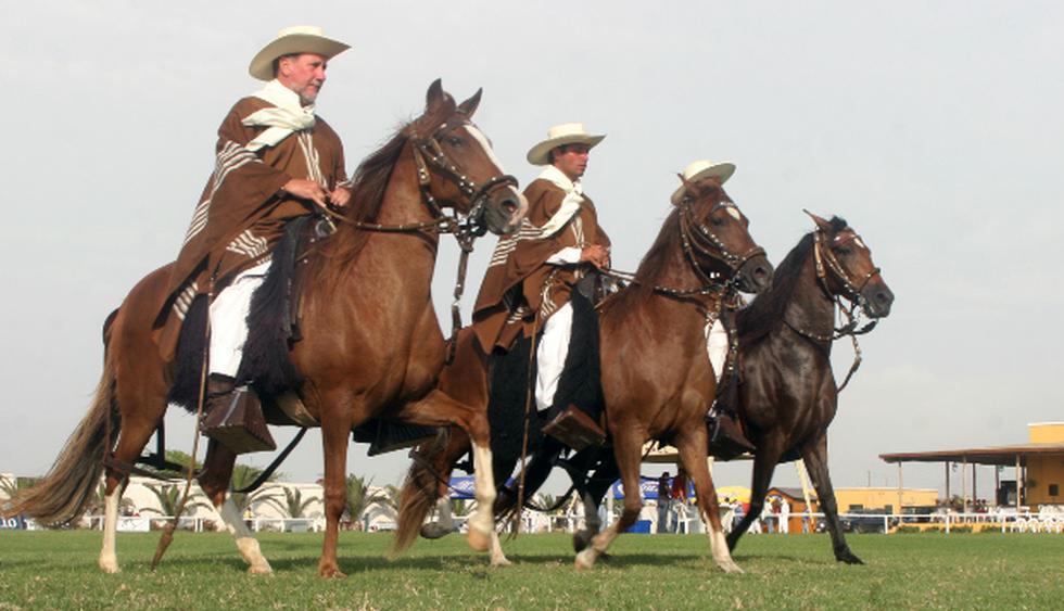 Escapa a Trujillo para ver exhibiciones de caballos de paso (S/30). (Foto: prom–peru)