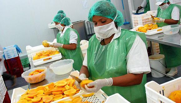 la campaña de exportación de mango de Áncash comenzó en febrero. (Foto: GEC)