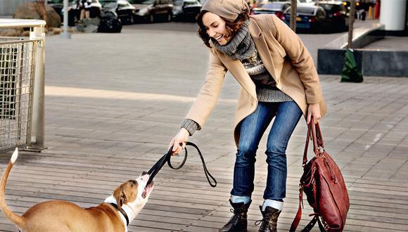 Aprende a ser un buen vecino y educa a tu mascota
