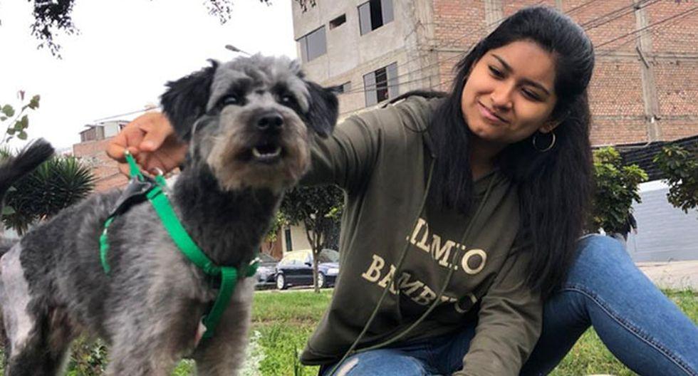 Perro adoptado que fue atropellado cuenta con una familia de lujo