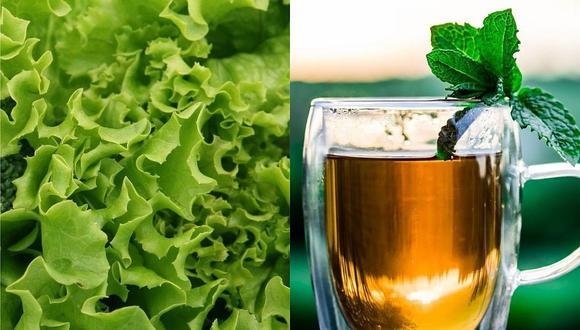 Esta hortaliza funciona como un excelente sedante natural recomendado para quienes tienen problemas para dormir por las noches. (Foto: Pixabay)