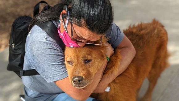 La mujer se reencontra con su perro luego de 7 años gracias a un microchip. (Foto: sanantonioacs)