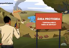 Guardaparques en pandemia: la defensa de la naturaleza frente a la arremetida de la ilegalidad