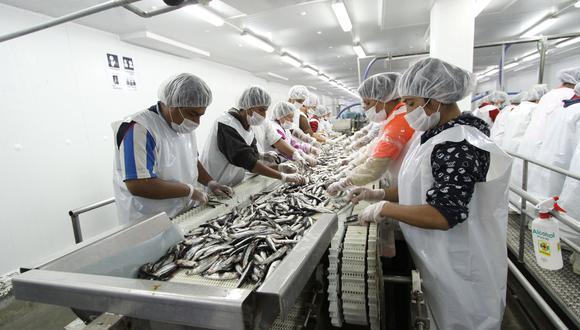 Ventas de la industria para consumo humano cayó tanto para la exportación como en el mercado interno. (Foto: GEC)