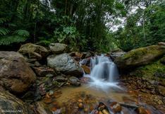 Conoce cuál es la primera Área de Conservación Regional de Cajamarca