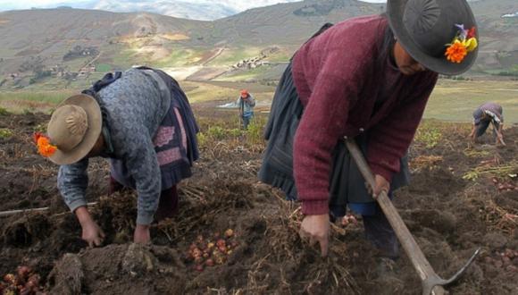Agro Rural tiene como ámbito de intervención a las zonas rurales en el ámbito agrario, en territorios de menor grado de desarrollo económico. (Foto: Difusión)