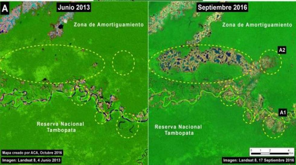 Minería ilegal arrasó 12.500 hectáreas desde el 2012 - 3