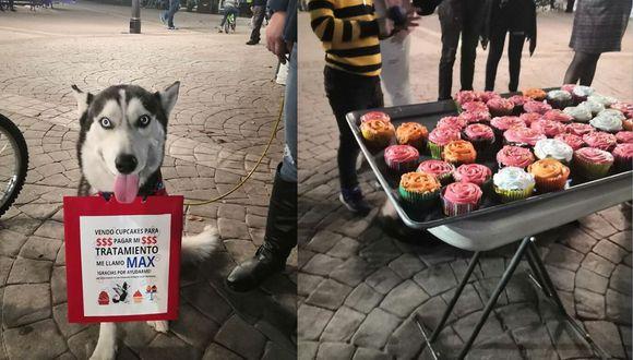 Max vendiendo sus cupcakes en una plaza de Hermosillo, Sonora, México.   (Foto: Facebook)