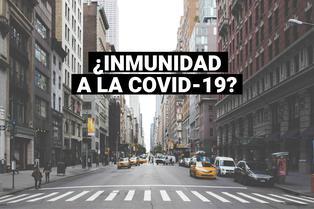 COVID-19: estudio demuestra que inmunidad cae rápidamente