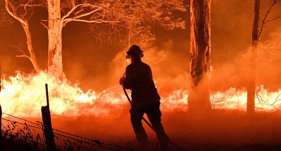 Para algunos científicos, el calentamiento global ha agravado la crisis de los incendios forestales, especialmente virulenta este año por el clima seco y cálido. (AFP)
