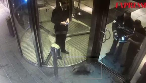 El tejón estresado que alertó a la policía en Estocolmo [VIDEO]