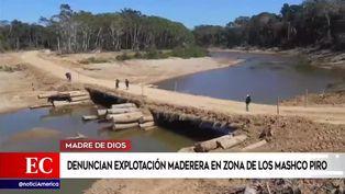 Madre de Dios: denuncian explotación maderera en zona de Los Mashco Piro