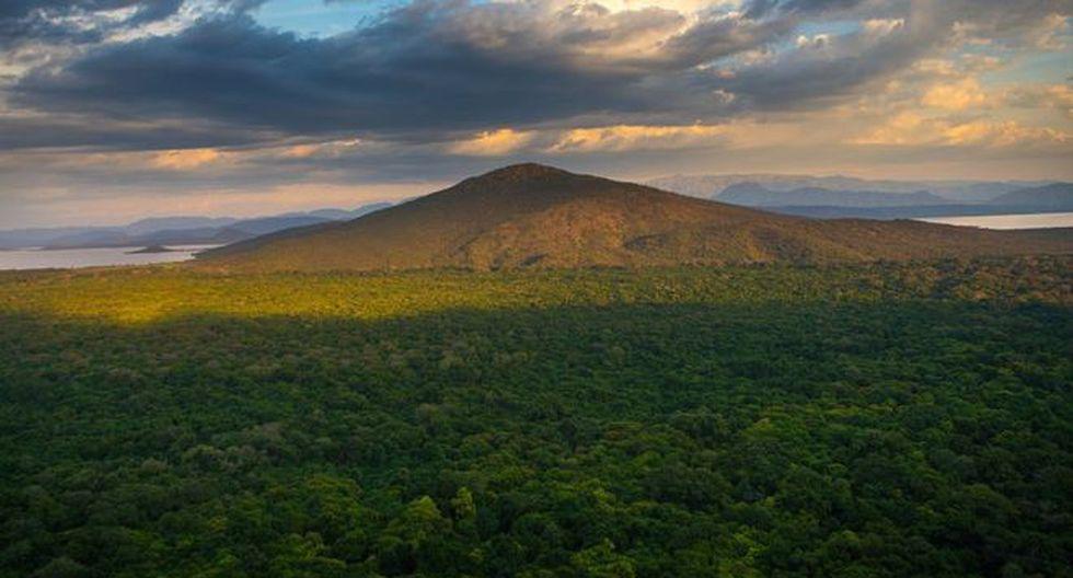 Etiopía ha perdido parte de sus bosques durante los últimos años. (Foto: Getty Images)