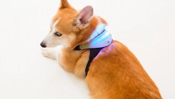 Este es el chaleco inteligente que te dice si tu perro estás feliz o triste. (Foto: Inupathy)