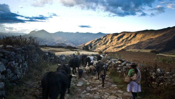 """""""En mi opinión, la impotencia para conquistar nuestro medio físico, más que fallas políticas y culturales, es la explicación principal del atraso peruano para crear una economía moderna y una sociedad integrada"""". (Foto: Andina)."""