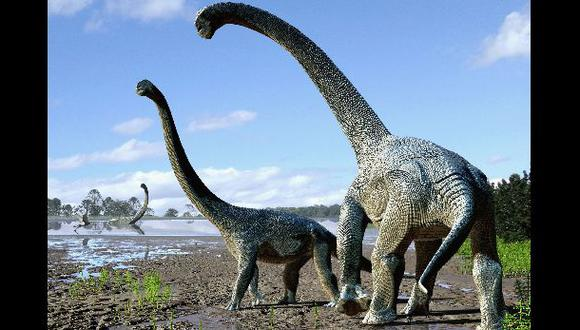 Descubren nuevos dinosaurios de cuello largo en Australia