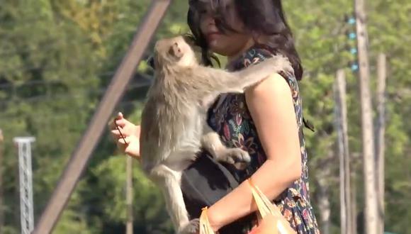 Mono travieso intenta robarle un beso a un turista en Tailandia. (Foto: Captura YouTube)