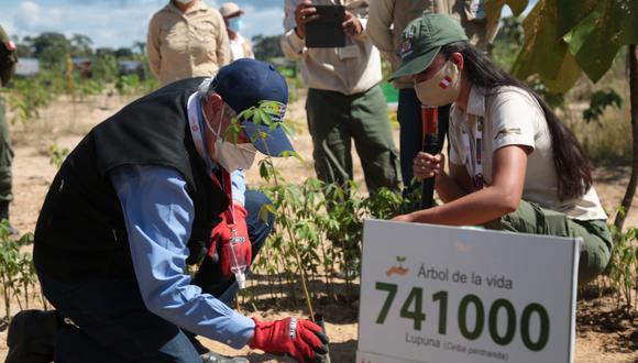 El proceso concluyó con la plantación simbólica de los últimos plantones de especies nativas. (Foto: Sernanp)