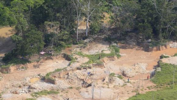 Tala ilegal en la Amazonía peruana continúa descontrolada, según Global Witness